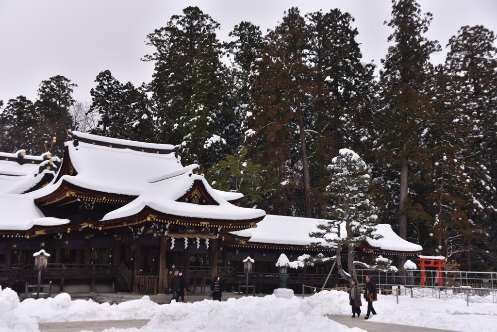 雪の多賀大社