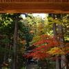 光前寺の紅葉