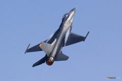 F16 (3)