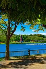 池の畔 (北区浮間 浮間公園 )