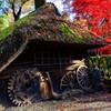 作業小屋と紅葉 平林寺にて