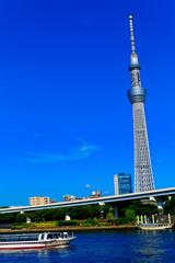 遊覧船とスカイツリー  (隅田川)