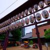 とげぬき地尊高岩寺前の提灯 (巣鴨 地蔵通り)
