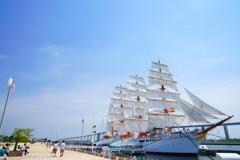 春の総帆展帆青空の帆