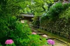 清涼の山門