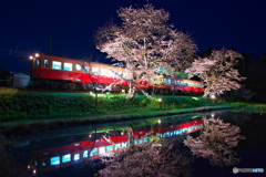 Sakura and Kominato railway