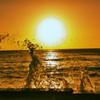 夕日と波しぶき