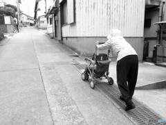 日間賀島・旅日記