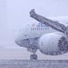 白銀の世界Ⅱ・Boeing 787-9