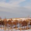 残雪の里山