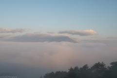 もふもふの雲海