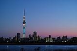 東京夜景・スカイツリー