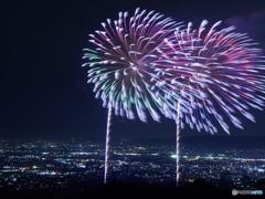 冬の花火(奈良公園)
