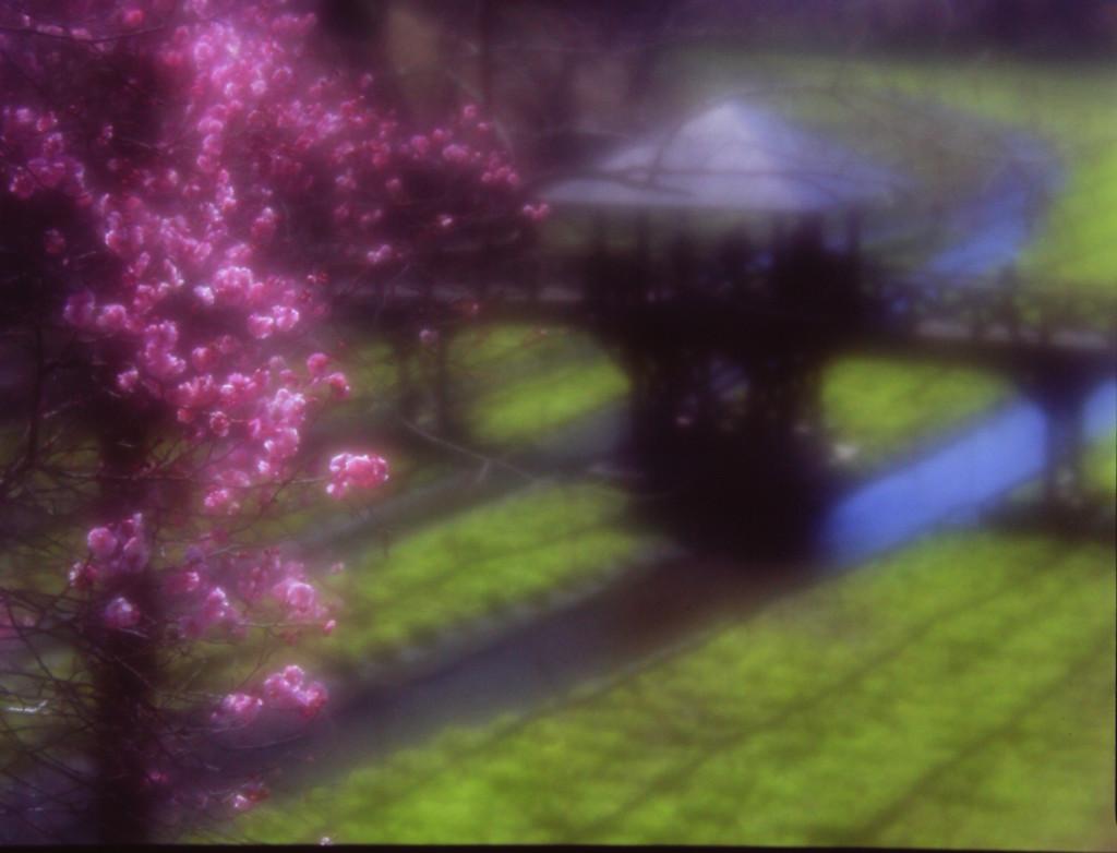 春の日の幻影