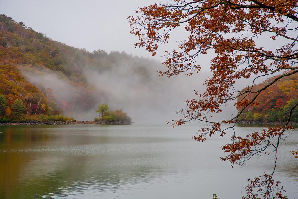 琵琶池にて