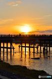 朝日渡る橋