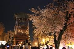 桜花 夜山車