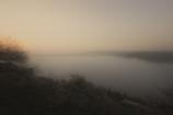 梅渓の夜明け 霧に霞む