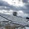 茶山桜  雪景色