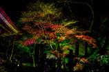 室生寺ライトアップ