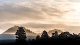朝霧に染まる