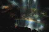 青葉で虹3