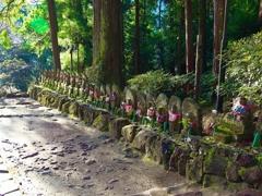 日本風景1263 秋