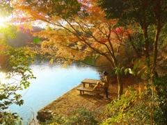 日本風景1245 秋紅葉