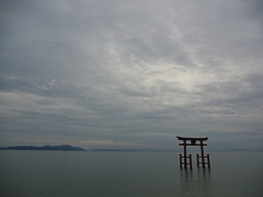 日本風景1184 鳥居