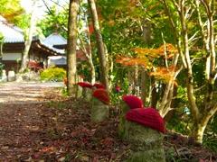 日本風景1251 秋