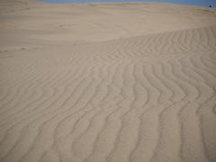 日本風景1047 砂丘