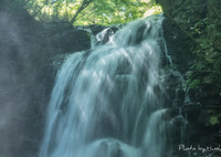 CANON Canon EOS 5DS Rで撮影した(盛夏の日差し)の写真(画像)