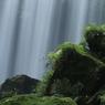自然のシャワー
