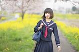 桜 x セーラー服