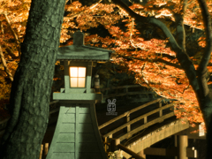 紅葉灯篭 で橋