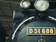 D51688