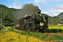Steam Locomotive 2