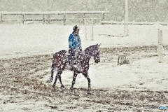 Horse training in the snow 4