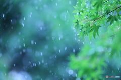 梅雨色ファンタジー