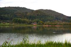 広沢の池にて