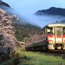 大岩駅の桜とはまかぜ