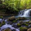 新緑の蓼科大滝