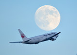 Moon&JAL