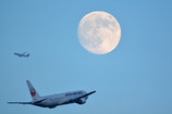 Moon&JAL JAL