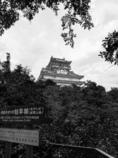 岐阜城攻め