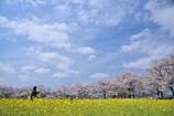 春・満・喫