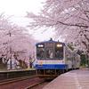 ishikawa sakura 2015 No9