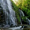 新緑の龍双ヶ滝