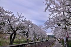 能登鹿島駅 今日も曇り??