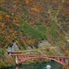 錦秋の庄川峡を行く